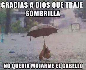 Meme para lluvia.