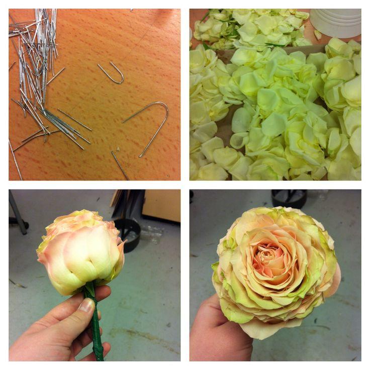 Først lager man mange hemper, også deler man opp rosene i tre størrelser, etter hvor de er på rosa. Så fester du bladene med å legge rosebladet på lik høyde med det forrige rose bladet.