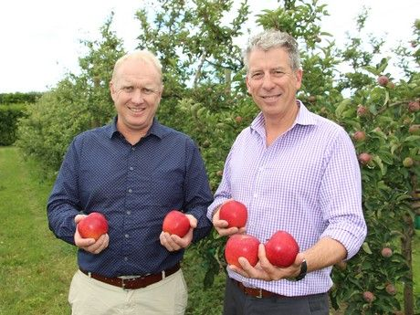 New Zealand has released a new apple variety which has been launched today by Fruitcraft, after being licensed for the worldwide rights by Prevar.The apple variety PremA129, which will be.....