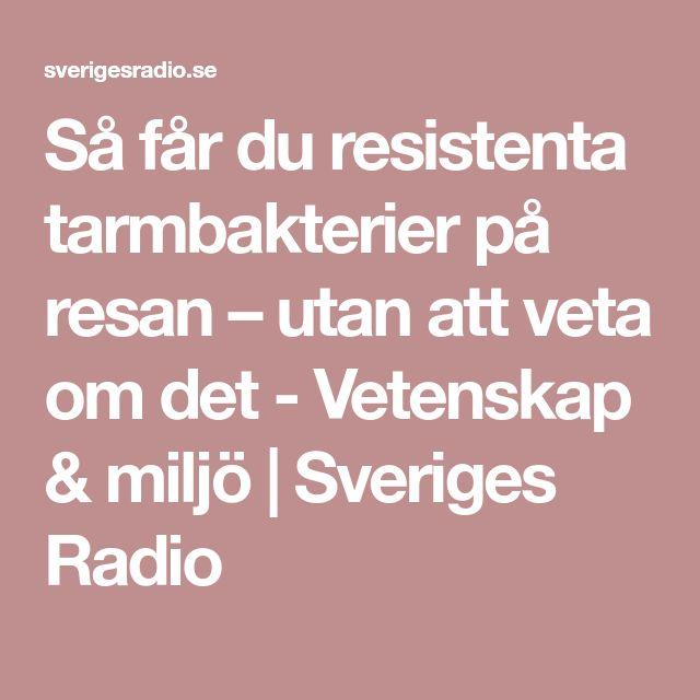 Så får du resistenta tarmbakterier på resan – utan att veta om det - Vetenskap & miljö   Sveriges Radio