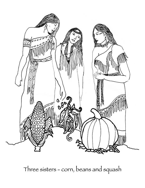 three beautiful wampanoag native american women discuss the three sisters corn beans and squash thanksgiving coloring pagesfirst