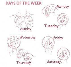 Days of the week. sign language project? learning about different languages and communication?
