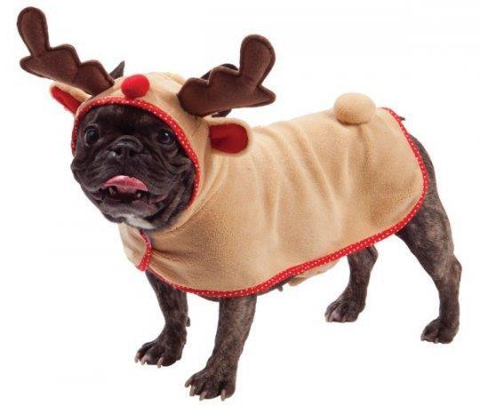 Костюм собаки на новый год