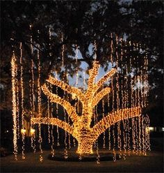 Captivating Outdoor Lights   Google Search