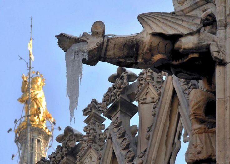 Doccione_del_Duomo_Milano_29.jpg (immagine JPEG, 1134×810 pixel)