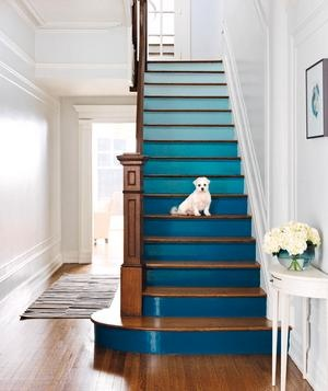 Ombre blue stairs that contrast nicely with the bronze wood