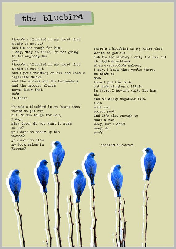 there's a bluebird in my heart that wants to get out- Charles Bukowski: