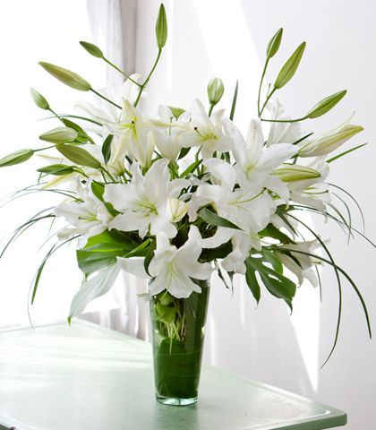 "White ""Casablanca"" Oriental Lilies are showcased in this mono-botanical design. Simple clear glass vase completes the look. Lirios Blancos is among our best smelling designs."