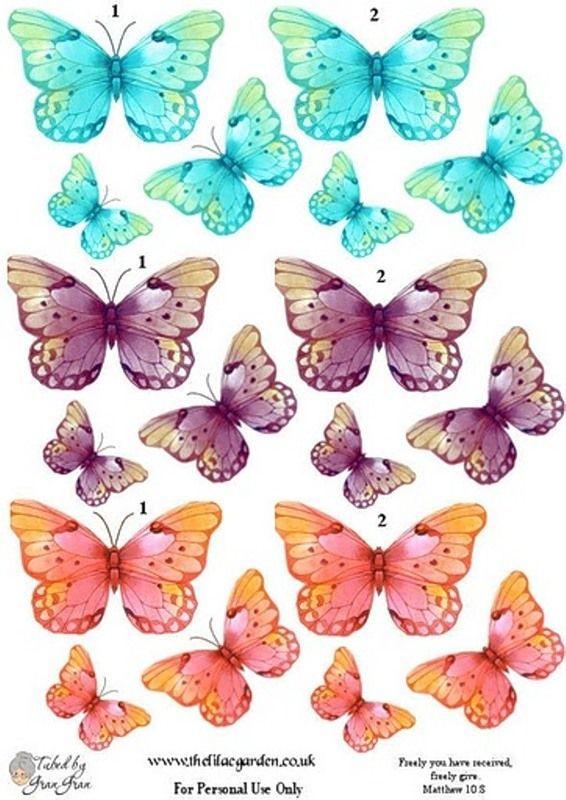 Бабочки для открытки шаблон цветной