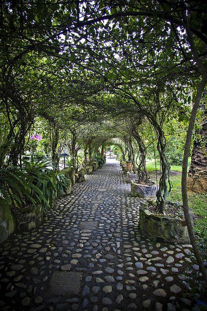 Walkway at Hosteleria and Hacienda Pontavi, Salinas, Ecuador (by Pete Flick).