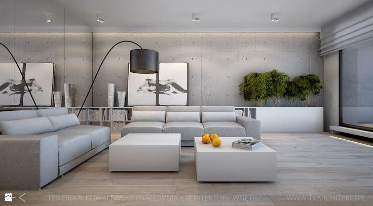 Salon styl Minimalistyczny - zdjęcie od TK Architekci - Salon - Styl…