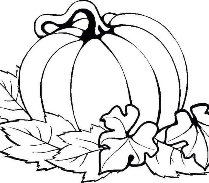 Thanksgiving Pumpkin Coloring Pages Trend