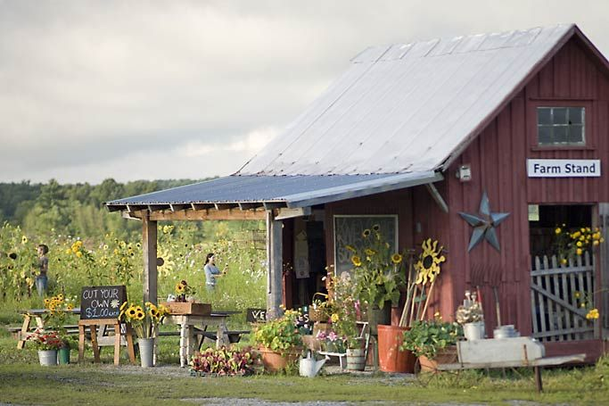 Farm stand, full of country goodness & charm!