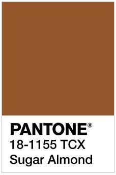 Image result for Sugar Almond pantone