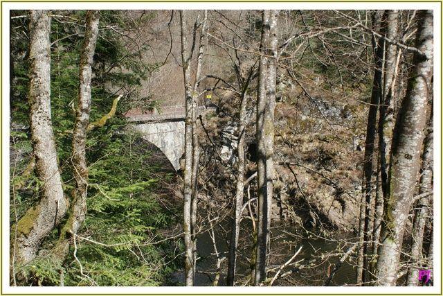 Paysage d'Auvergne La Rhue aux environs de Champs sur Tarentaine Elle prend sa source dans le Massif central à plus de 1.300 m d'altitude dans les Monts Dore sur les pentes du puy Ferrand, vers Église neuve d'Entraïgues près de la station de Super Besse...