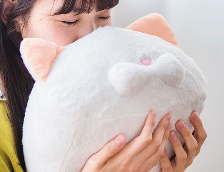 Apparently the back of a cat's head smells like heaven. And to cash in on this weird phenomenon, Japanese company Felissimo has developed a cat head-scente