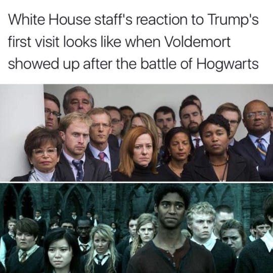 Image result for harry potter memes