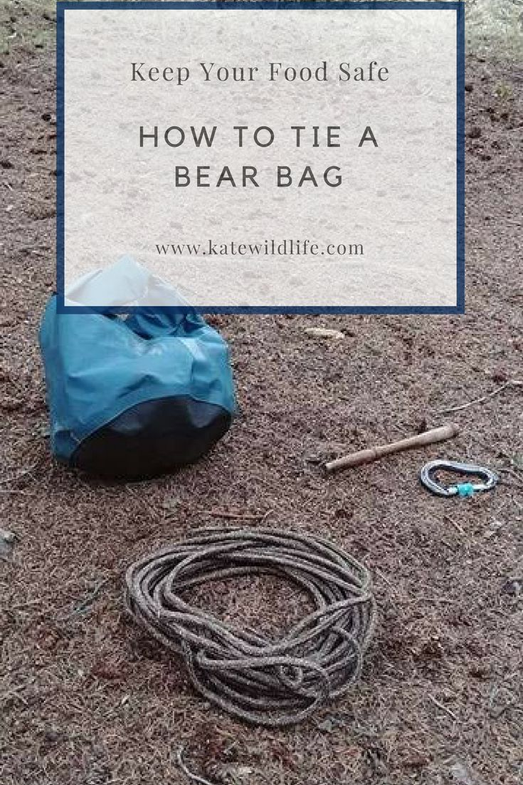 How to hang a bear bag, and tips about food storage! Enter your email for the free bear safety cheat sheet!