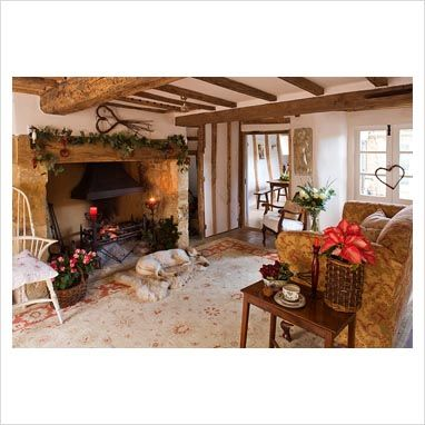 LOVE This Fireplace And Everything In This Living Room...and Love The Dog