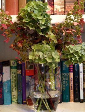 Cómo secar flores de hortensia | Guía de jardineria #Floressecas