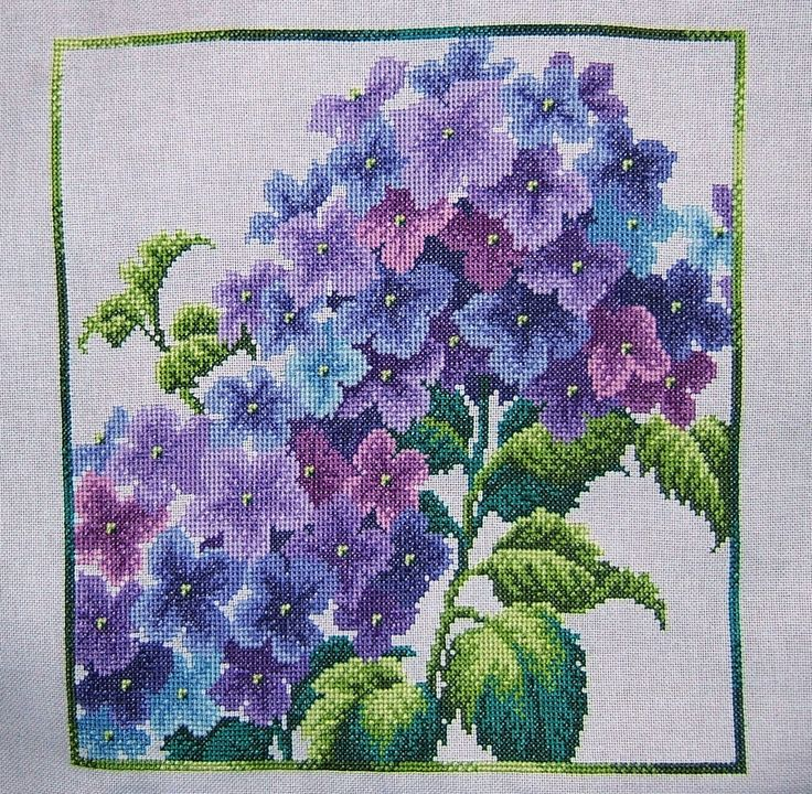 """scarlet quince"" cross stitch 
