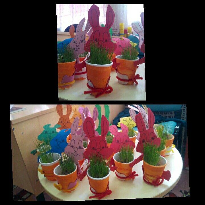 Sevimli tavşanların havuçları :) (çimleri  ektik, büyüttük)