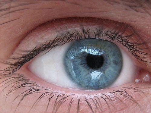 Perché gli occhi blu non ispirano fiducia  Gli individui con gli occhi chiari sono giudicati meno affidabili di quelli con gli occhi scuri. Ma è soprattutto la forma del viso a influenzare l'opinione delle persone. Lo studio su Plos One  Leggi l'articolo su Galileo (http://www.galileonet.it/articles/50ed3c8ba5717a390b0000e3)  Credits immagine: ilexxx/Flickr (http://www.flickr.com/photos/ilexxx/)