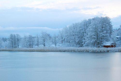 A calm winter landscape by Fi20100, via Flickr