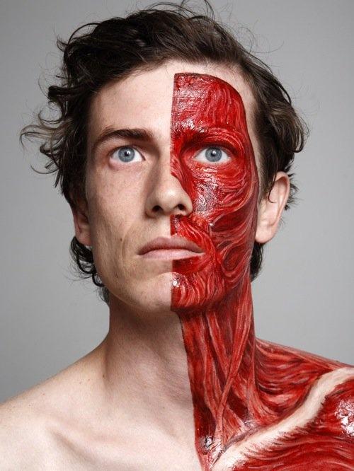 Анатомия лица человека фото
