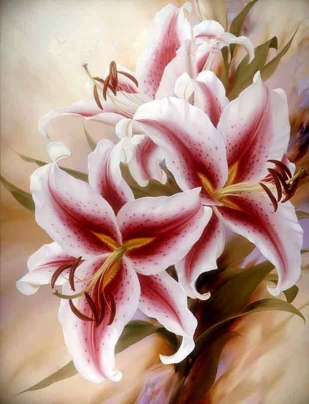 Lilys, Igor Levashov~-my favorite flower