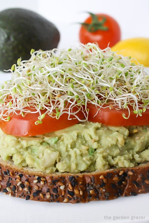 Our favorite lunch! EASY 5-minute chickpea avocado mash with lemon!! (vegan)