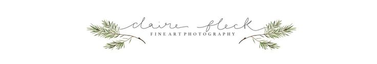 Weddings — Claire Fleck Photography