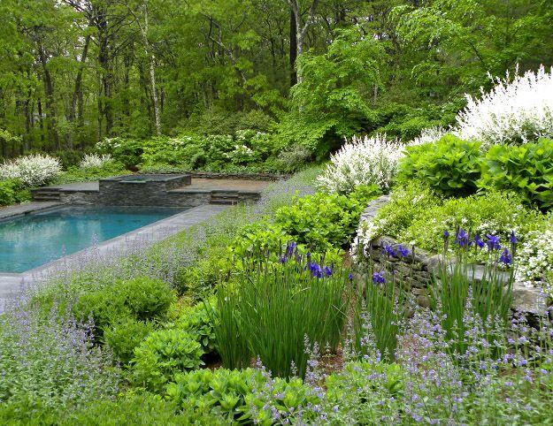 25 Best Images About Hampton S Landscape Ideas On