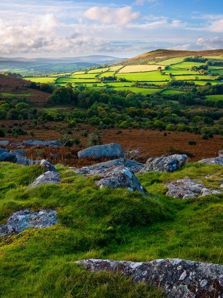 Hayne Down near Manaton in Dartmoor National Park looking towards Easdon Tor, Devon