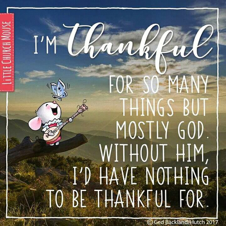 Thankful for many things..