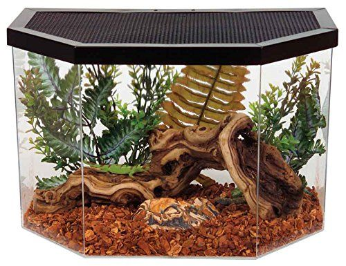 Constructed of impact resistant acrylic the Repitat 5-gallon flat-backed reptile habitat from KollerCraft is made specifically for reptiles small animals and insects. Offering optimum viewing space...