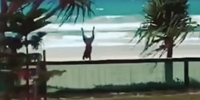 Excited dog throws itself over a beach's gate just to get to the water that much sooner.