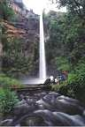Sabie: Picture Gallery Mpumalanga South Africa photos photographs pictures gallery nature waterfalls falls Maria Shires Lone Creek Mac Mac Forest Horse Shoe Bridal Veil Panorama Long Tom Three Rondawels 3 Rondawels Pinnacle Burke's Luck Potholes St. Peter's Church Berlin God's Window, Blyde Canyon
