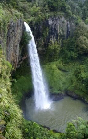 Bridal Veil Falls - Raglan 1 hour drive from Hamilton. There is a car park on Kauroa-Kawhia Rd with toilets and quite a big picnic area. An easy 20 minutes return Bridal Veil Falls Walk is leading to the waterfalls lookout. The track is suitable for people of all abilities. http://waterfalls.co.nz/waterfalls-by-region/north-island/87-new-zealand-waterfalls/north-island/waikato/101-bridalveil-falls