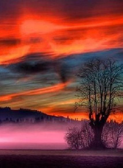 This beautiful mix of colours reminds me of a sunset in Africa. It sets the tone for the entire image.