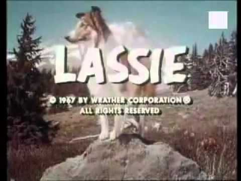 Lassie, I didn't get to watch this if I acted up in church!