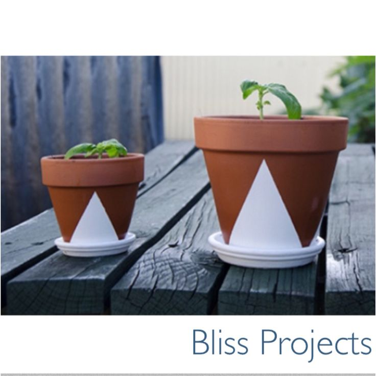 Geometric design on terracotta pots. Grow your herbs or water succulents and use as decor in the kitchen or around the home. #diy #pots #blissprojects #homedecor #easydecor #potplants #herbs #geometric #simpledesign #terracotta #white #kitchendecor #gardening