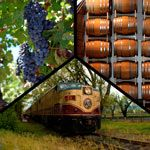 Visit both Charles Krug Winery and Raymond Vineyards on the Napa Valley Wine Train's Ambassador Tour!