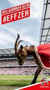 1. FC Köln App – Miniaturansicht des Screenshots