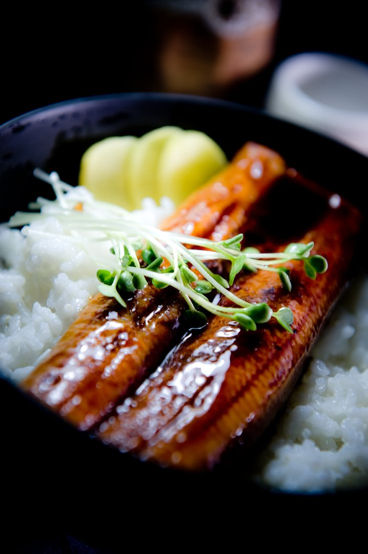 Japanese grilled eel over rice