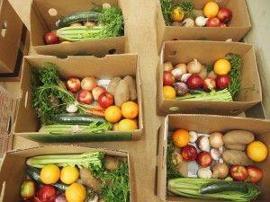 Good Food Box - Fresh Food for You