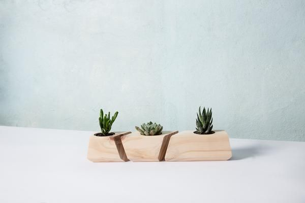 Our planters are hand crafted from a solid piece of wood with beautiful detail in the wood grain paired with great angles and bevels.  A gorgeous addition to your work desk, or living space.  Each Planter is different and unique due to the characteristics of the wood.   #succulentplanter #succulent #planter #woodplanter #australianmade #handmade #homedecor #giftideas #birthdaygift #christmasgift   more gifts for the home at #fetchforhome & www.fetchlane.com.au