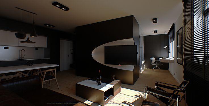 Salon / Pokój dzienny / Living room