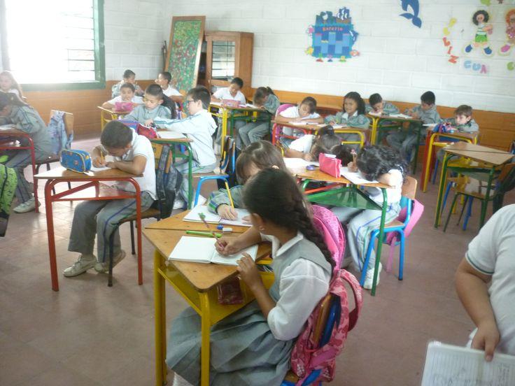 fortalecimiento de todos los niveles educativos