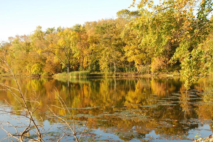Skokie Lagoon fall colors